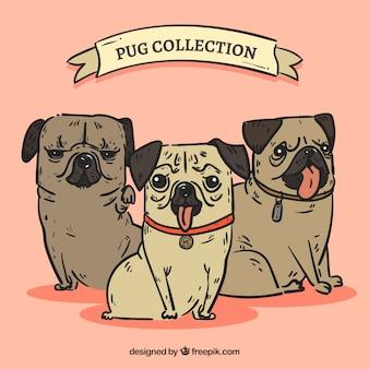 Fun pack von hand gezeichneten pugs