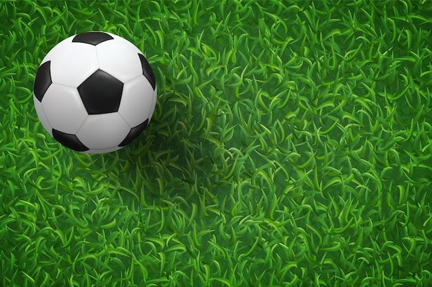Fußballfußball auf grünem gras.