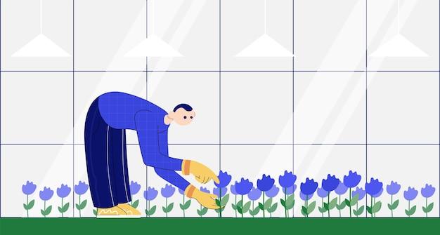 Gärtner kümmert sich um blumen im garten. flache karikaturillustration des farbvektors.