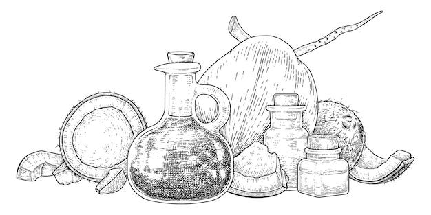 Ganze halbe schale fleisch und öl der kokosnuss handgezeichnete skizze.