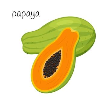 Ganze papaya und halbieren mit samen und fruchtfleisch. exotische tropische früchte. flacher stil.