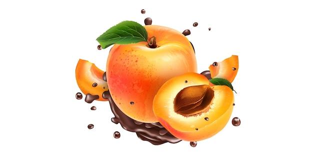 Ganze und geschnittene aprikosen in schokoladenspritzern auf weißem grund. realistische illustration.