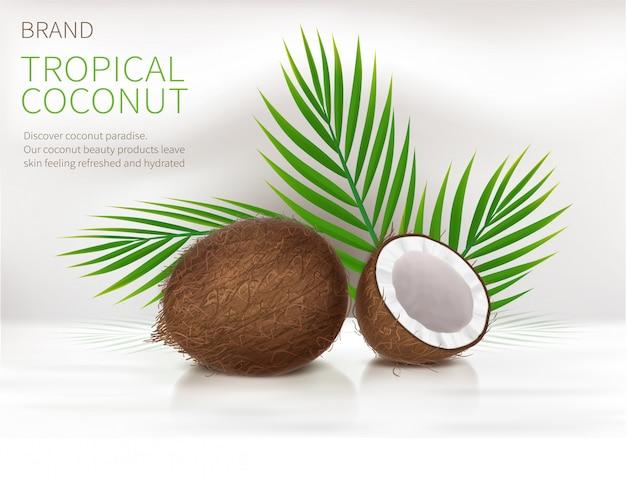Ganze und halbe gebrochene kokosnuss