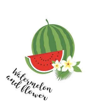 Ganze wassermelone mit scheibe und blättern. vektor-illustration. obst-set. icons tropische früchte mit blättern und blumen. set trendige illustrationen des vektors getrennt auf weiß.
