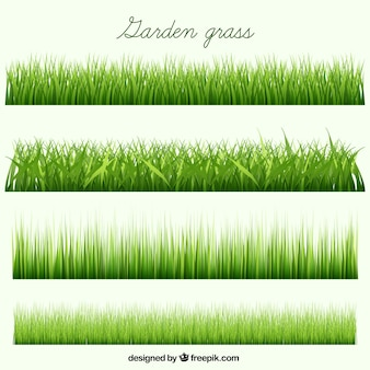 Garten gras sammlung