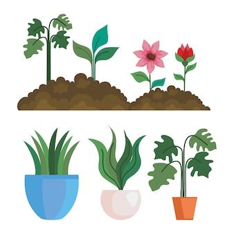 Gartenblumen auf der erde und pflanzen in töpfen design, gartenpflanzung und naturthema