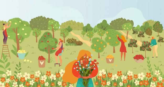 Gartenpflege, gartenarbeit, menschen und früchte auf bäumen im sommer ernten cartoon-illustration, gärtner sammeln früchte.