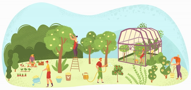 Gartenpflege menschen gartenarbeit, ernte und pflege für bäume, pflanzen im pflanzenhaus und blumen gärtner illustration.