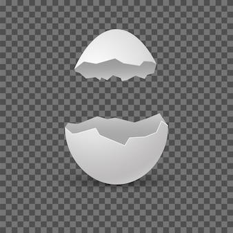 Gebrochene eier. eierschale knacken. vektorrealistische bruchweißschale auf transparentem hintergrund.