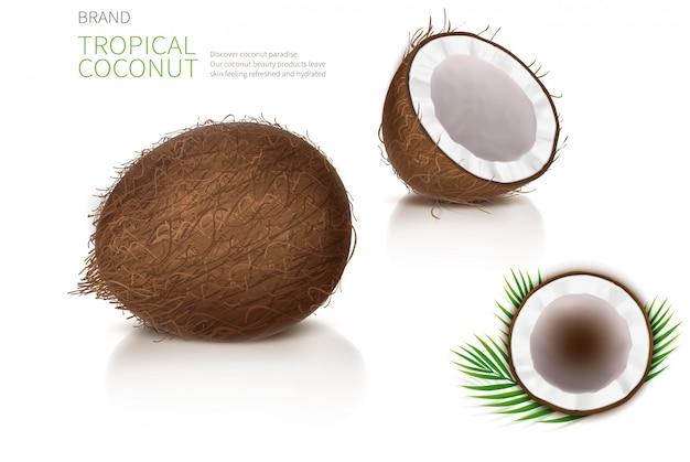 Gebrochene und ganze kokosnuss