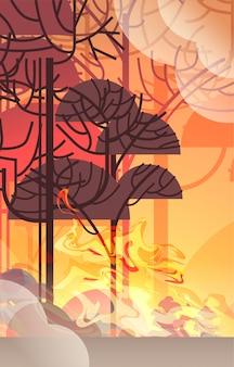 Gefährliches verheerendes buschfeuer entwicklung trockenes holz brennende bäume konzept der globalen erwärmung der naturkatastrophe intensive orange flammen vertikal