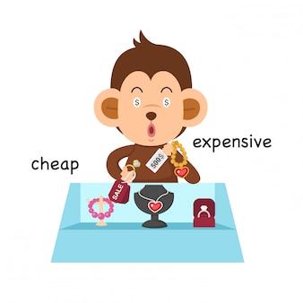 Gegenüber billiger und teurer Illustration