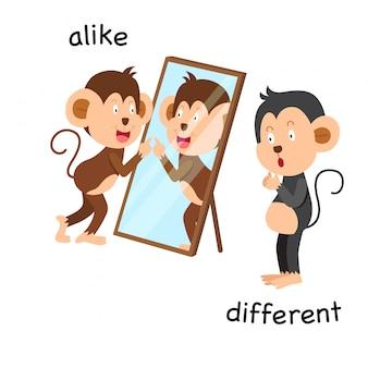 Gegenüber gleich und unterschiedliche darstellung