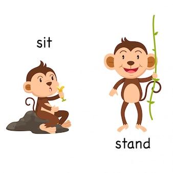 Gegenüber sitzen und stehen