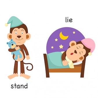 Gegenüber stehende und liegende illustration