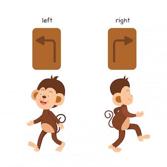 Gegenüberliegende linke und rechte vektorillustration