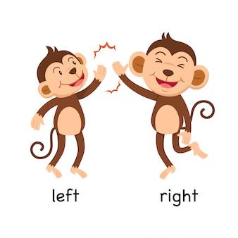 Gegenüberliegende wörter links und rechts