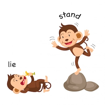 Gegenüberliegende wörter lügen und stehen