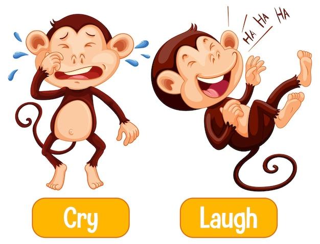 Gegenüberliegende worte mit weinen und lachen