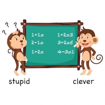Gegenwörter dumm und klug