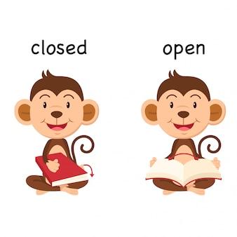 Gegenwörter geschlossen und offen