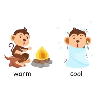 Gegenwörter warm und kühl