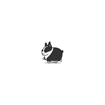 Gehende ikone des fetten boston-terrierhundes