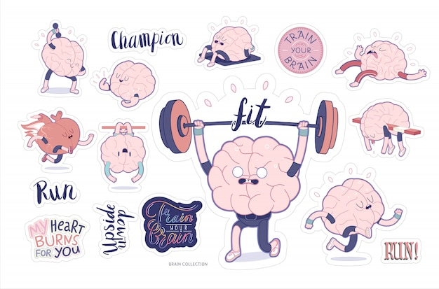 Gehirn aufkleber fitness-set