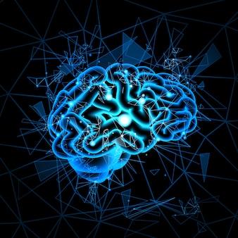 Gehirn neuronen aktivität