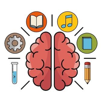 Gehirn, umgeben von symbolen