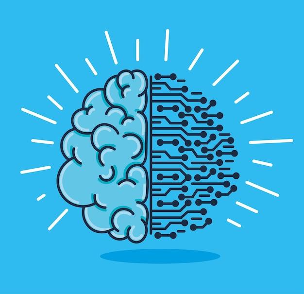 Gehirn und schaltung