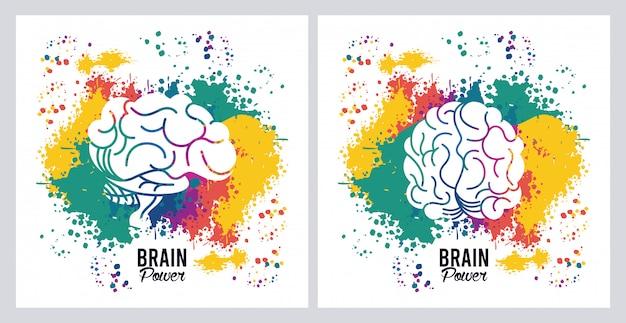 Gehirnkraft mit farbspritzern