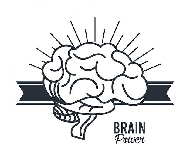 Gehirnleistung im band