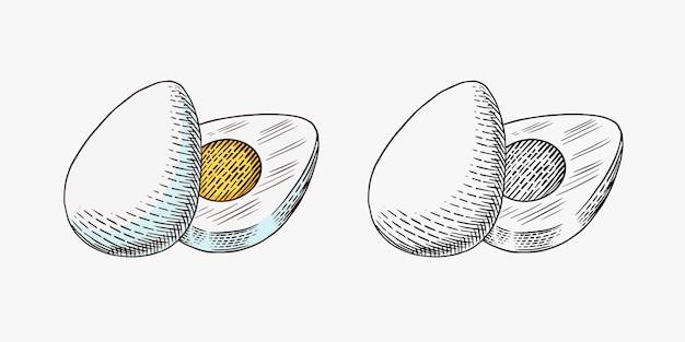 Gekochtes ei mit eiweiß und eigelb
