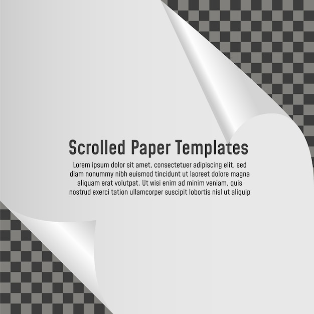 Gekräuselte ecke der papierleeren seite mit schatten. vektor vorlage abbildung