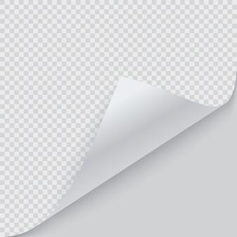 Gekräuselte papierecke mit schatten