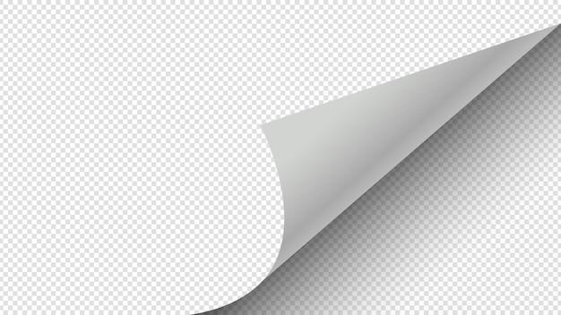 Gekräuselte seite. papierseite, die eckvektorillustration dreht. transparenter weißer papieraufkleber. eckpapierseite, blattaufkleber locken, gerollte falte