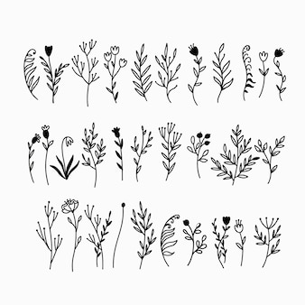 Gekritzel pflanzen sammlung