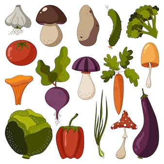 Gekritzelsatz herbsterntegemüse und -pilze satz vegetarisches essen