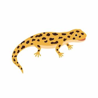 Gelbe eidechse, gefleckter salamander. vektorillustration lokalisiert auf weißem hintergrund.