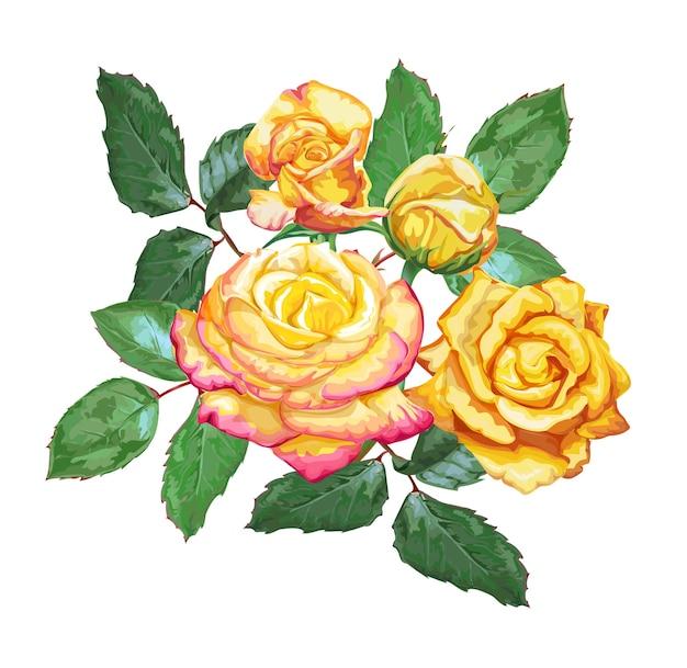 Gelbe rosen vektor-illustration
