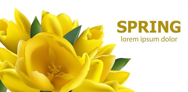 Gelbe tulpenfrühlingskarte