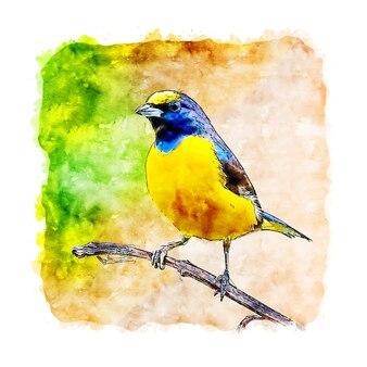 Gelbe vogel tier aquarell skizze hand gezeichnete illustration