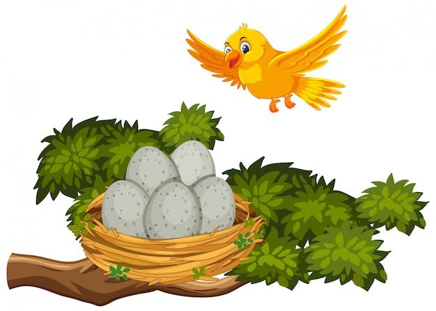 Gelber vogel, der zum nest fliegt