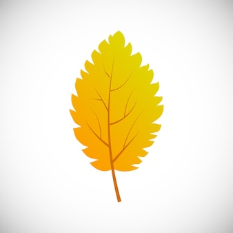 Gelbes birkenblatt. herbstblatt eines baumes auf weißem hintergrund. vektor-illustration