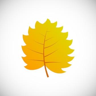 Gelbes blatt. herbstblatt eines baumes auf weißem hintergrund. vektor-illustration