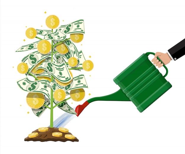 Geldmünzenbaum. wachsender geldbaum.