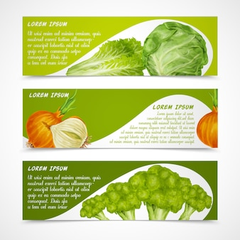 Gemüse banner horizontal