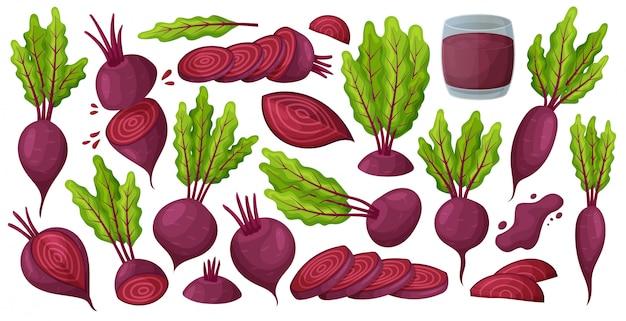 Gemüse der gesetzten ikone der vektorkarikatur der roten rübe