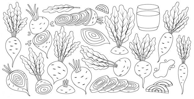 Gemüse der roten rübe in der linie gesetzte ikone der art.